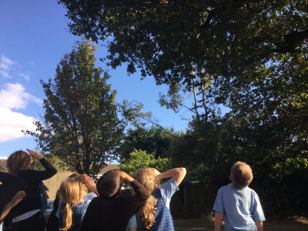 prep school children bird watching
