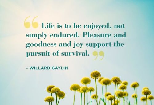 enjoyment quote